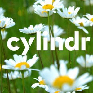 cylindr logo with daisies