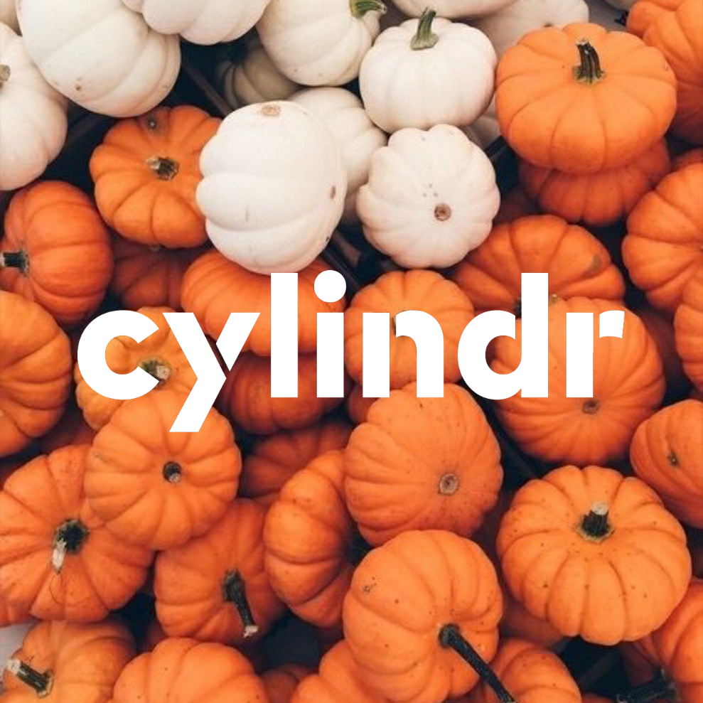 cylindr logo in fall